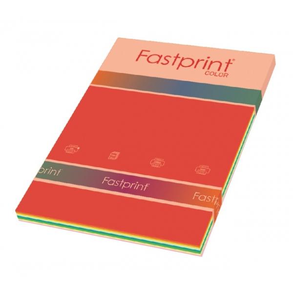 Inkjetpapier fastprint a4 160gr 10kleuren x 5v